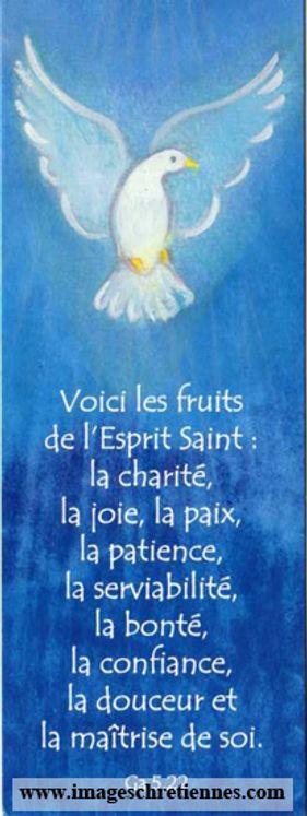 Lot de 25 - Signet Maïté Roche Colombe - Voici les fruits de l´Esprit Saint