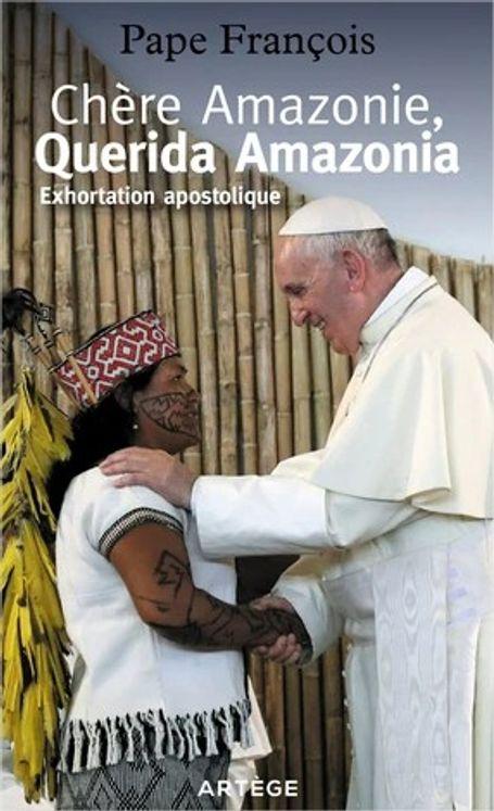 Chere amazonie - querida amazonia - exhortation apostolique post-synodale